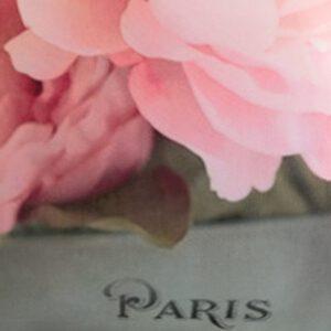 kukat-vaaleanpun-paris-lähi