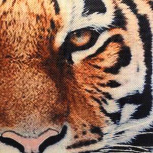 tiikeri-lähi